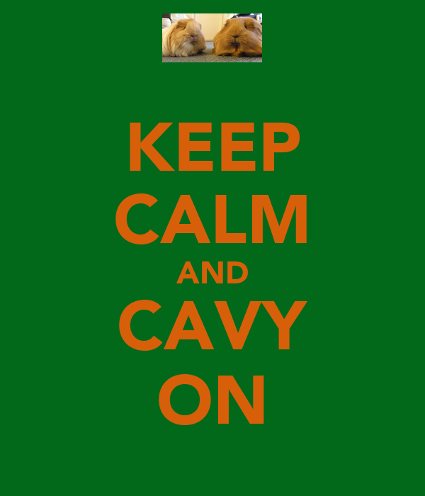 KEEP CALM AND CAVY ON
