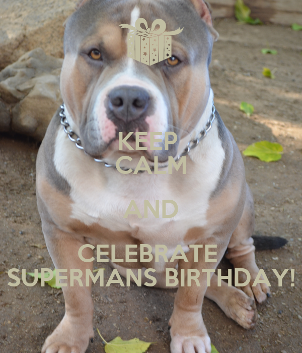 KEEP  CALM AND CELEBRATE  SUPERMANS BIRTHDAY!