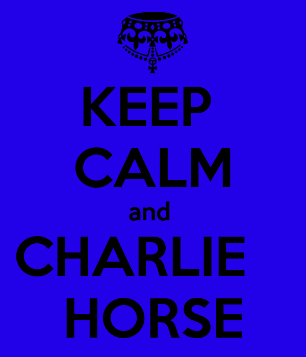 KEEP  CALM and  CHARLIE    HORSE