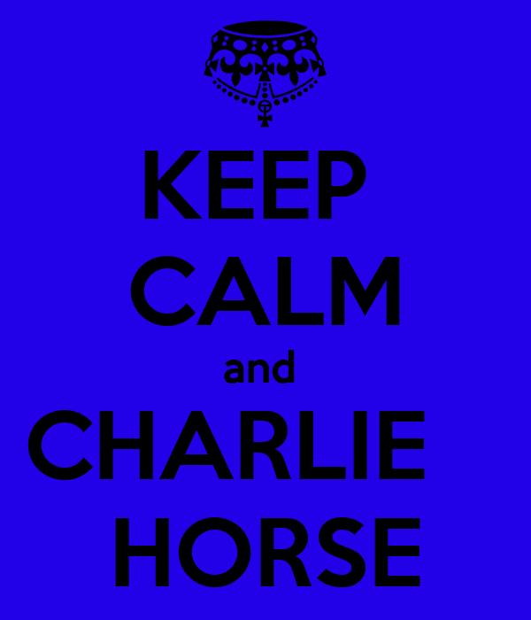 KEEP  CALM and  CHARLIE    HORSE