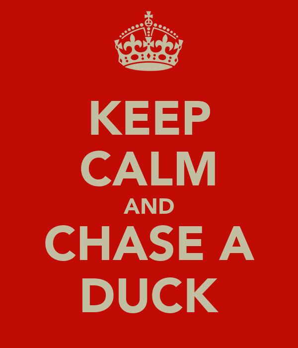 KEEP CALM AND CHASE A DUCK