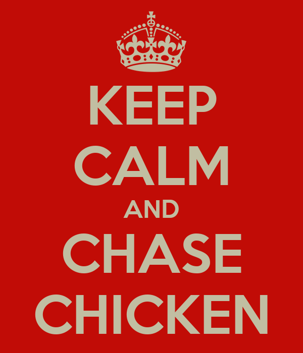 KEEP CALM AND CHASE CHICKEN