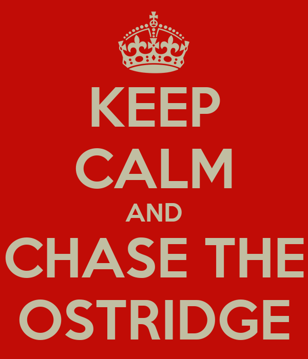 KEEP CALM AND CHASE THE OSTRIDGE
