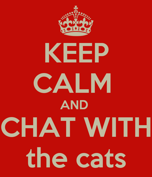 KEEP CALM  AND  CHAT WITH the cats