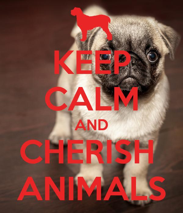 KEEP CALM AND CHERISH  ANIMALS