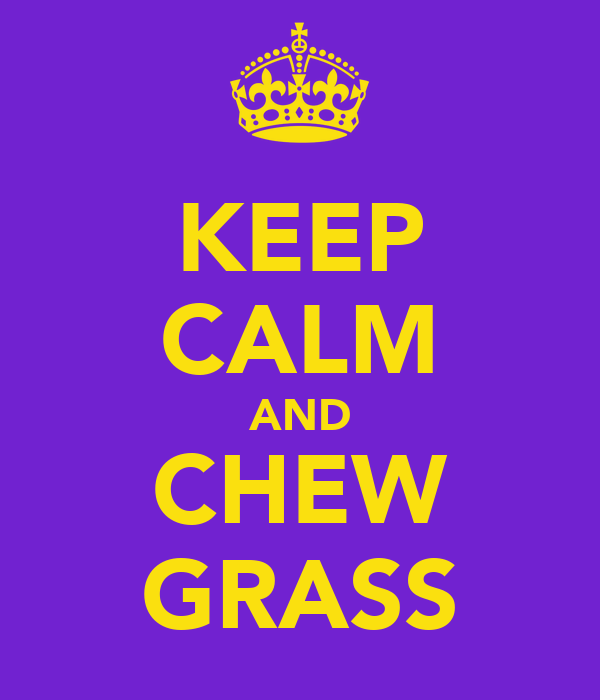 KEEP CALM AND CHEW GRASS