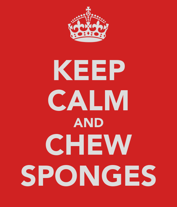 KEEP CALM AND CHEW SPONGES