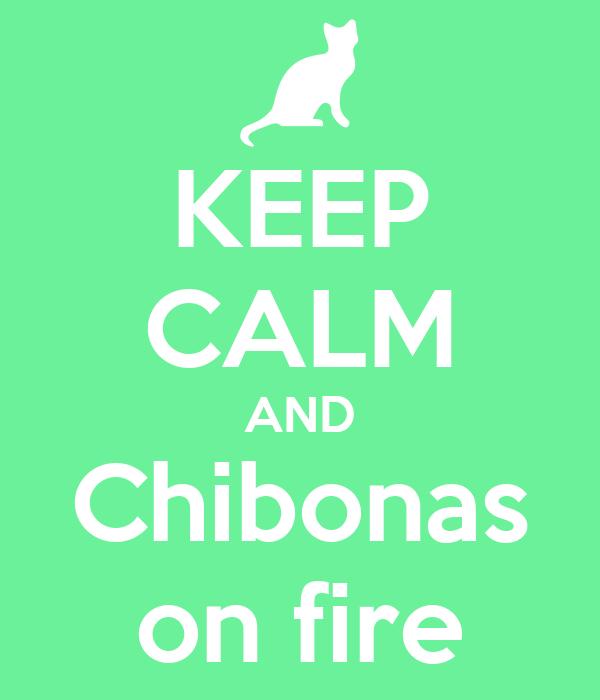 KEEP CALM AND Chibonas on fire