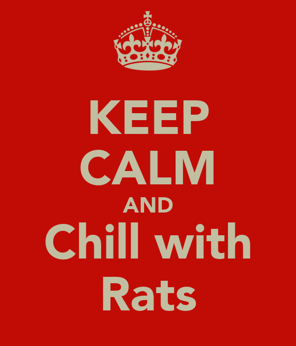 KEEP CALM AND Chill with Rats