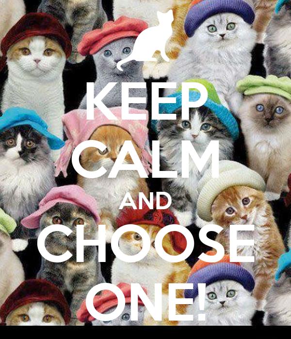 KEEP CALM AND CHOOSE ONE!
