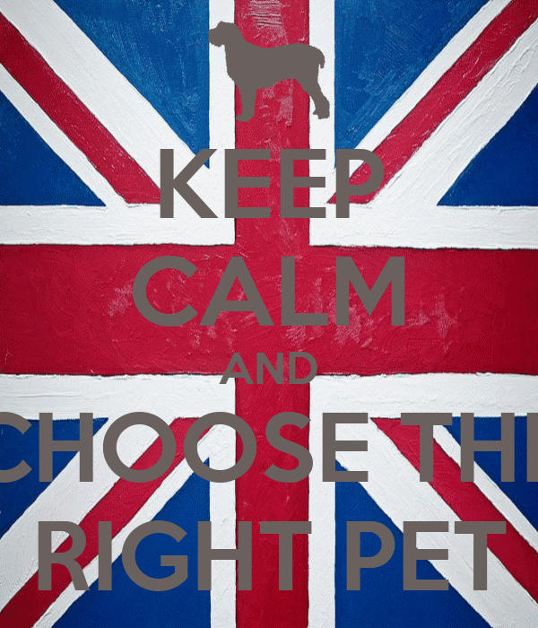 KEEP CALM AND CHOOSE THE RIGHT PET