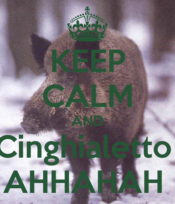 KEEP CALM AND Cinghialetto  AHHAHAH