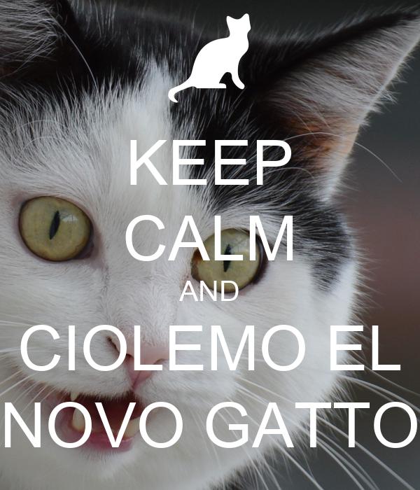 KEEP CALM AND CIOLEMO EL NOVO GATTO