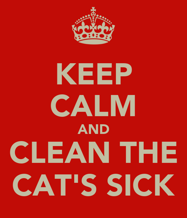 KEEP CALM AND CLEAN THE CAT'S SICK