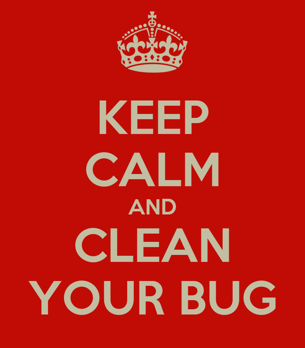 KEEP CALM AND CLEAN YOUR BUG