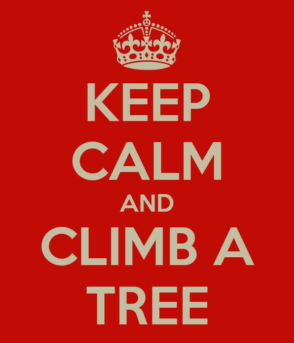 KEEP CALM AND CLIMB A TREE