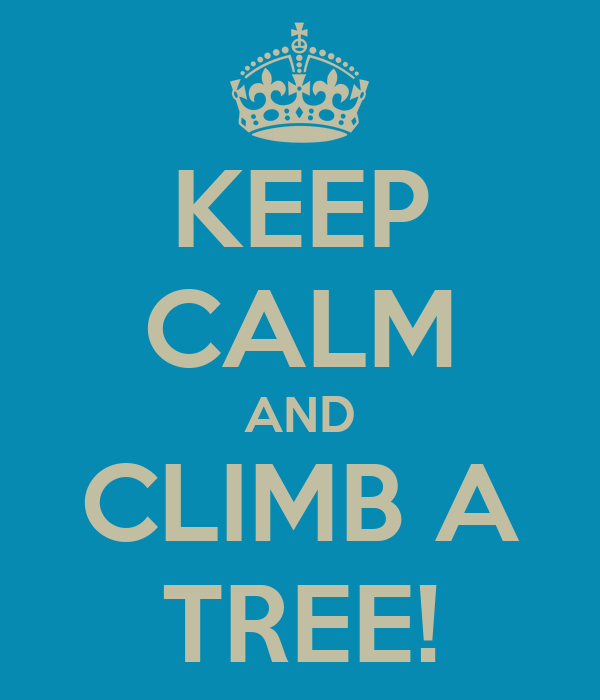 KEEP CALM AND CLIMB A TREE!
