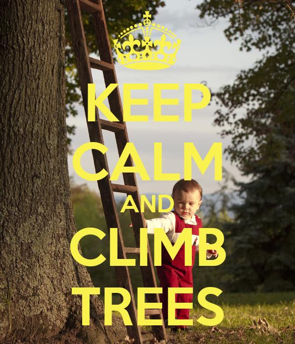 KEEP CALM AND CLIMB TREES
