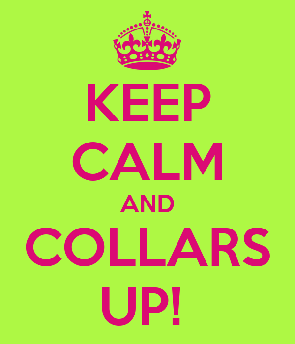 KEEP CALM AND COLLARS UP!