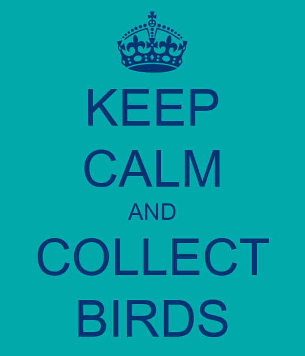 KEEP CALM AND COLLECT BIRDS