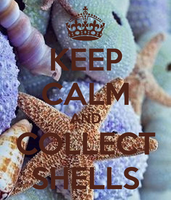 KEEP CALM AND COLLECT SHELLS