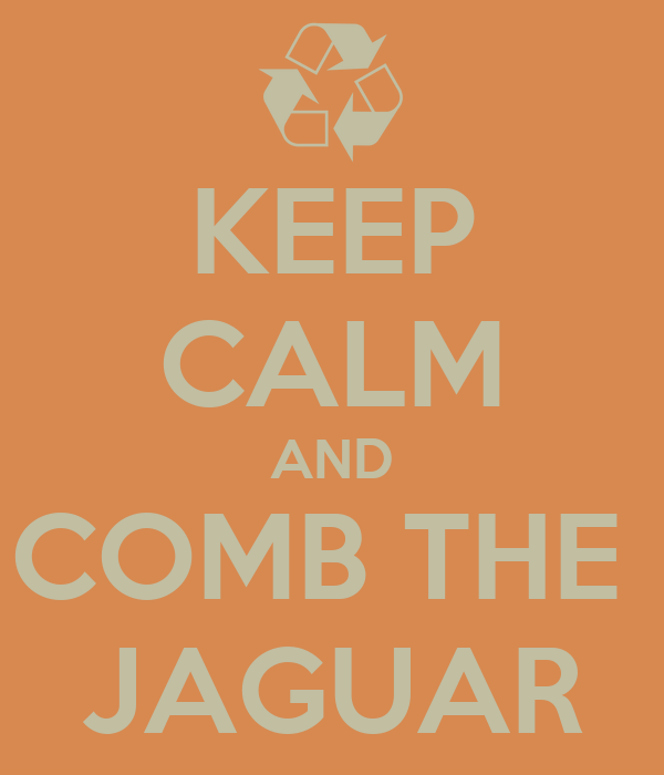 KEEP CALM AND COMB THE  JAGUAR
