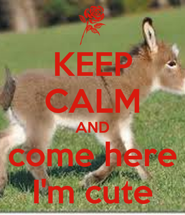 KEEP CALM AND come here I'm cute