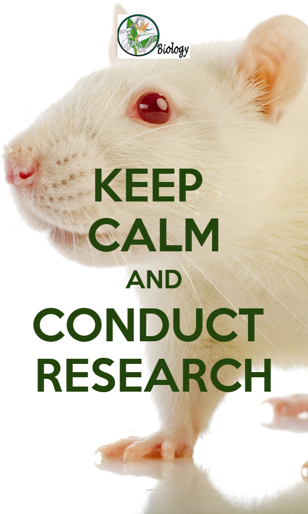 KEEP  CALM AND CONDUCT  RESEARCH