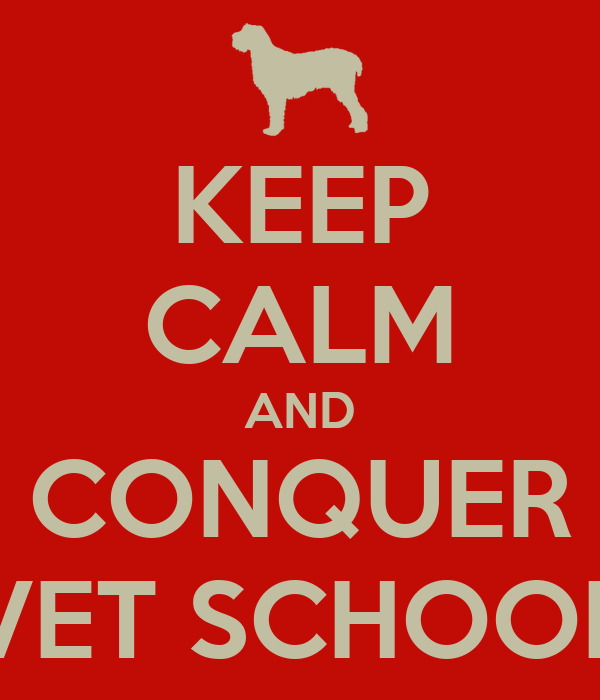 KEEP CALM AND CONQUER VET SCHOOL Poster