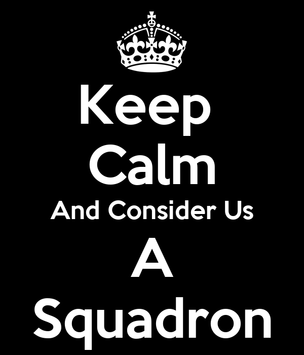 Keep  Calm And Consider Us A Squadron