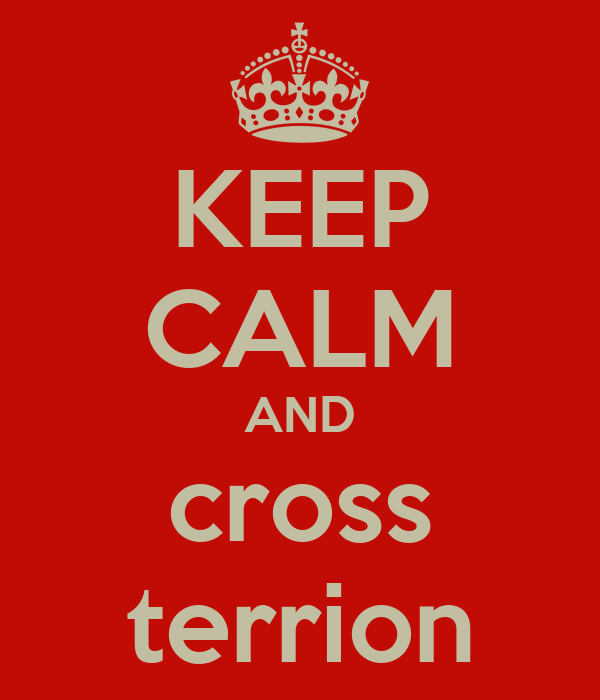 KEEP CALM AND cross terrion