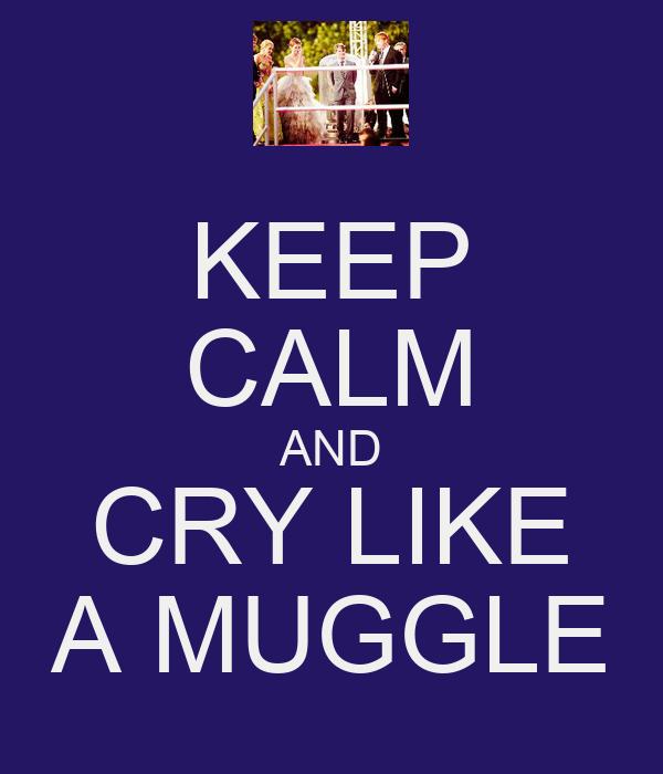 KEEP CALM AND CRY LIKE A MUGGLE