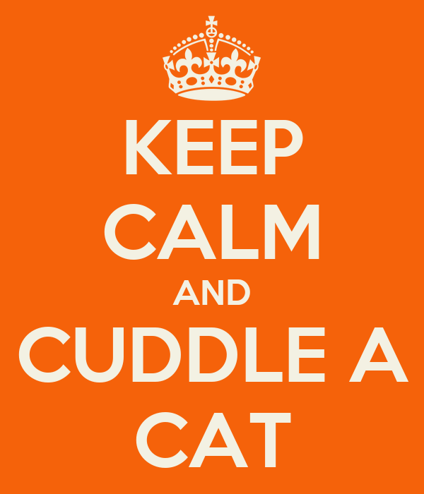 KEEP CALM AND CUDDLE A CAT