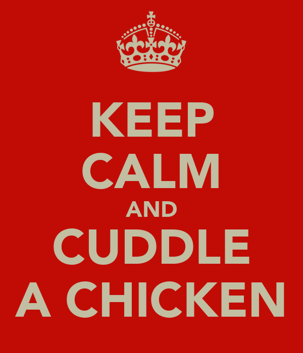 KEEP CALM AND CUDDLE A CHICKEN