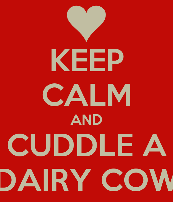 KEEP CALM AND CUDDLE A DAIRY COW