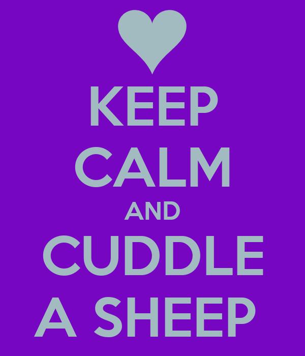 KEEP CALM AND CUDDLE A SHEEP
