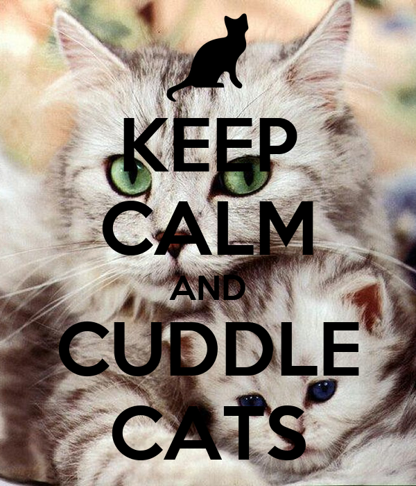 KEEP CALM AND CUDDLE CATS