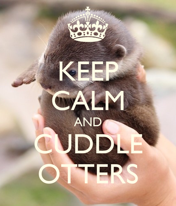 KEEP CALM AND CUDDLE OTTERS