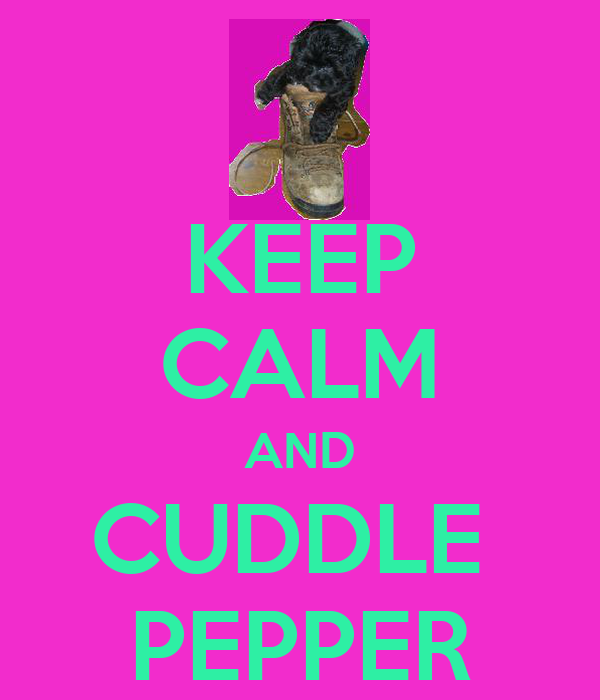 KEEP CALM AND CUDDLE  PEPPER