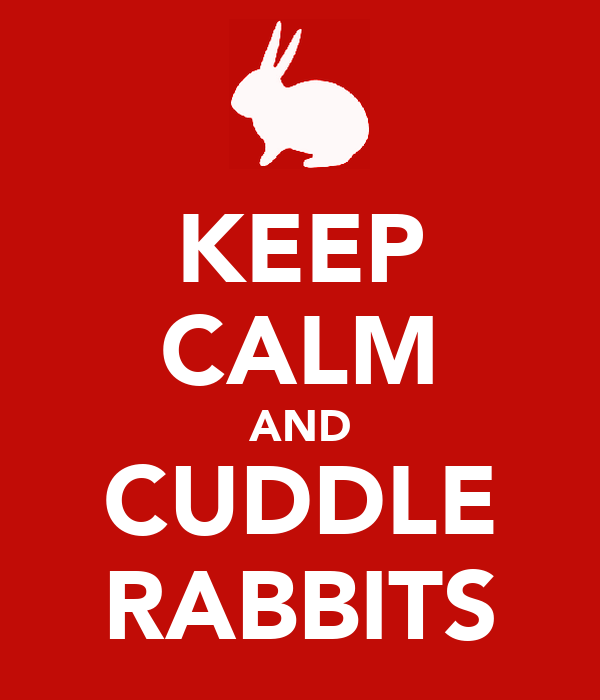 KEEP CALM AND CUDDLE RABBITS