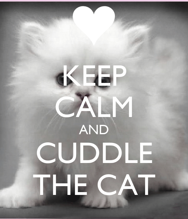 KEEP CALM AND CUDDLE THE CAT