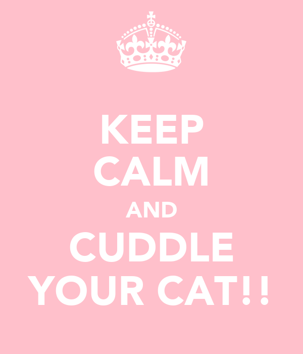 KEEP CALM AND CUDDLE YOUR CAT!!