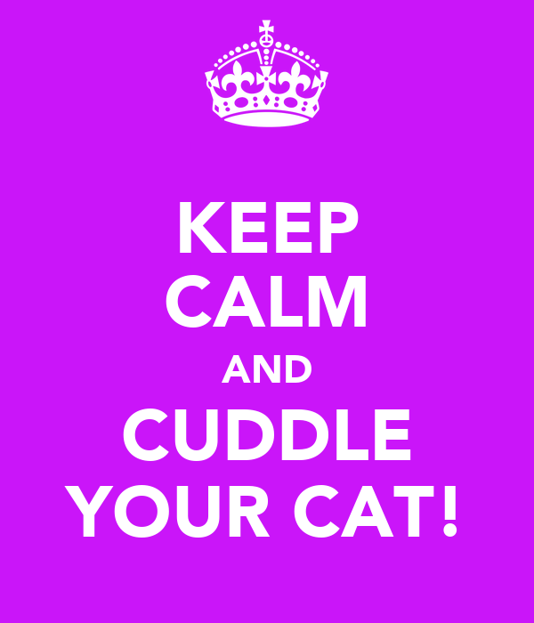 KEEP CALM AND CUDDLE YOUR CAT!