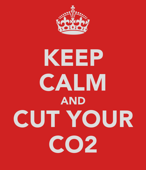 KEEP CALM AND CUT YOUR CO2