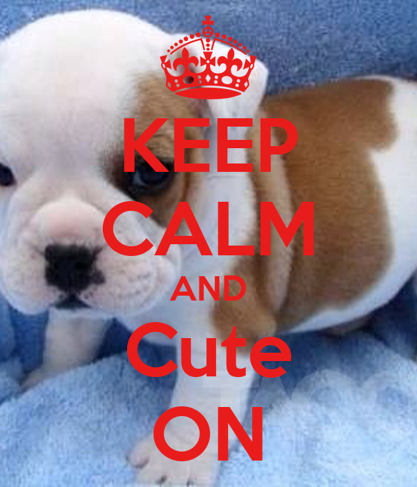 KEEP CALM AND Cute ON