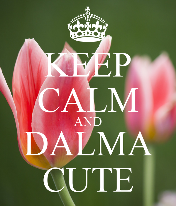 KEEP CALM AND DALMA CUTE