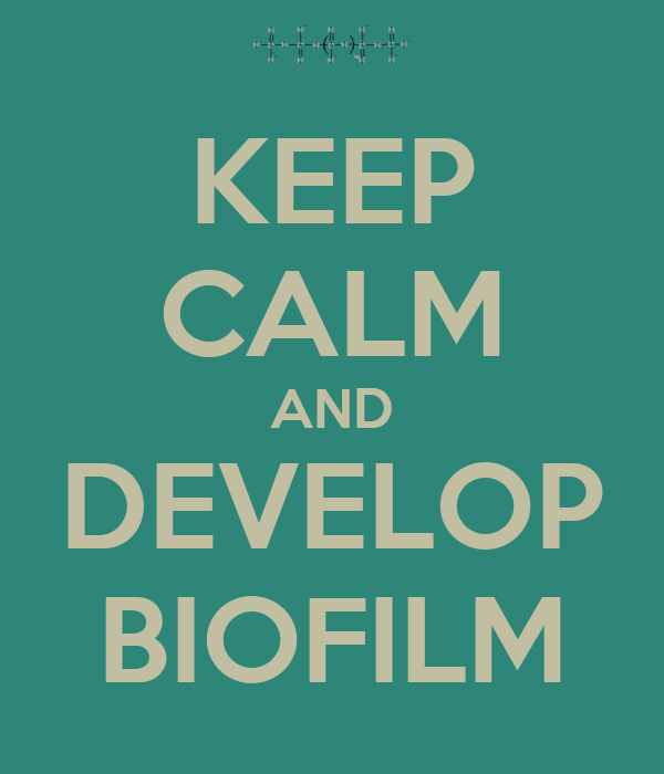 KEEP CALM AND DEVELOP BIOFILM