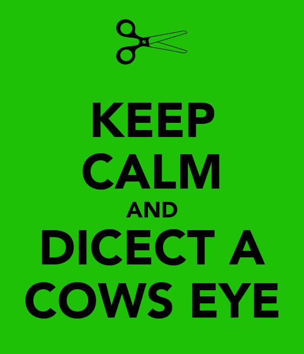 KEEP CALM AND DICECT A COWS EYE