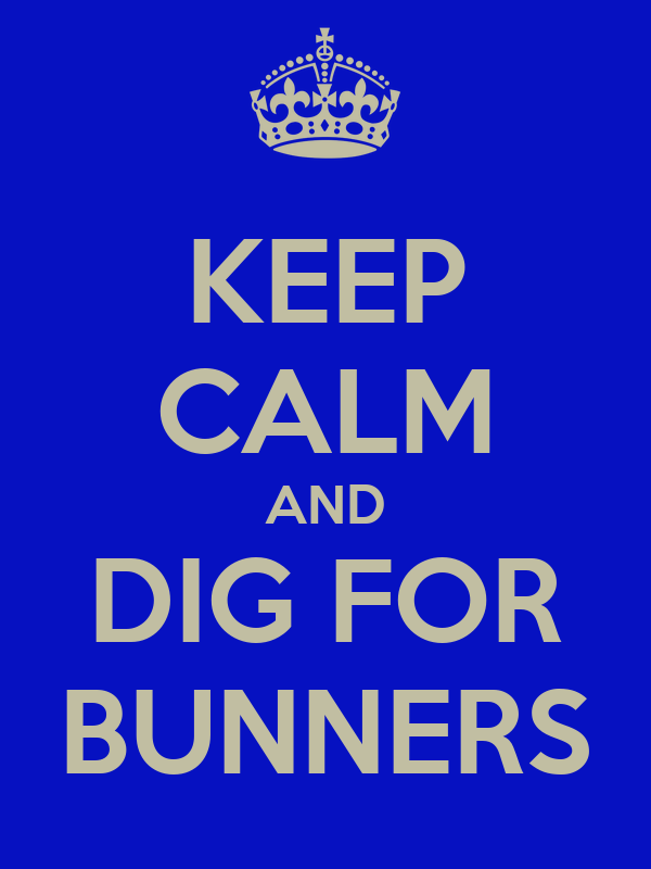 KEEP CALM AND DIG FOR BUNNERS