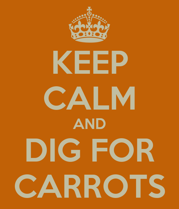 KEEP CALM AND DIG FOR CARROTS